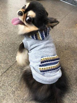画像3: 犬服 パーカー型紙 小型犬〜中型犬用