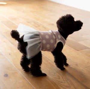 画像2: 犬服 チュールワンピース型紙 小型犬〜中型犬用