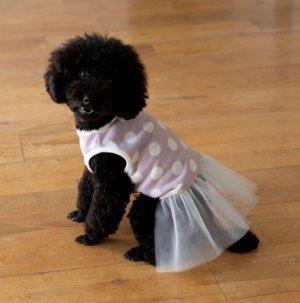 画像1: 犬服 チュールワンピース型紙 小型犬〜中型犬用
