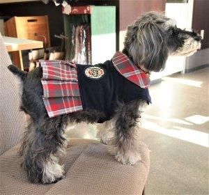 画像2: 犬服 プリーツワンピースコート型紙 小型犬〜中型犬用