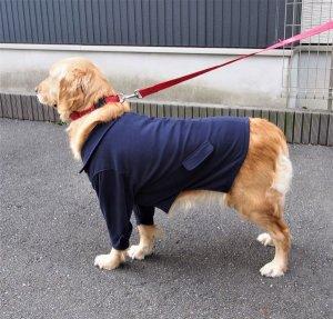 画像3: 犬服 ピーコート型紙 大型犬用