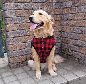 画像2: 犬服 前あきタンクトップ型紙 大型犬用
