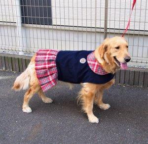 画像2: 犬服 プリーツワンピースコート型紙 大型犬用
