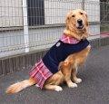 犬服 プリーツワンピースコート型紙 大型犬用