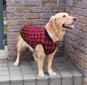 画像1: 犬服 前あきタンクトップ型紙 大型犬用