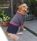 犬服 デニムスカート付きTシャツ型紙 大型犬用