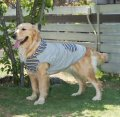 犬服 パーカー型紙 大型犬用