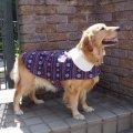 犬服 おでかけコート型紙 大型犬用