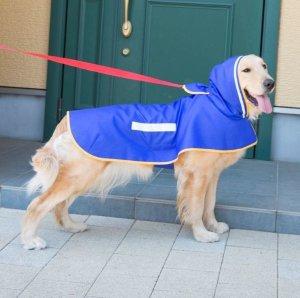 画像1: 犬服 レインコート型紙 大型犬用