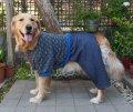 犬服 カバーオール型紙 大型犬用