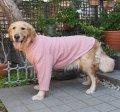犬服 ハイネック長袖Tシャツ型紙 大型犬用