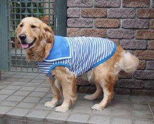 画像2: 犬服 セーラーカラータンクトップ型紙 大型犬用