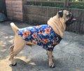 犬服 アロハシャツ型紙 小型犬〜中型犬用
